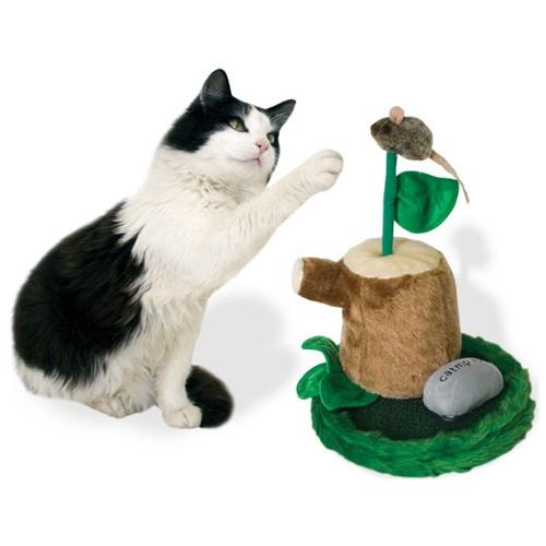 משחקי חתולים